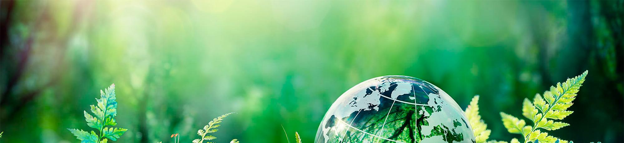 Екологія та охорона навколишнього середовища - 1